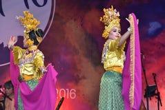 De Dans van Timangburung Stock Afbeeldingen
