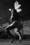 De Danser van Carnaval Stock Afbeeldingen