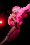 De danser van het cabaret Stock Afbeeldingen