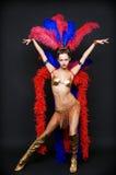 De danser van het cabaret Stock Afbeelding