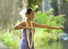 De Danser van Hula Stock Afbeeldingen