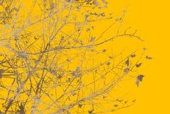 De de abstracte texturen en achtergronden van de bloem Stock Foto
