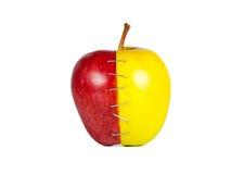 De de appelhelften van het contrast Stock Afbeeldingen