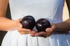 De de Aziatische vruchten en groenten van de vrouwenholding Royalty-vrije Stock Afbeeldingen