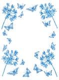 De de blauwe bloemen en vlinders van de groetkaart witn Royalty-vrije Stock Foto
