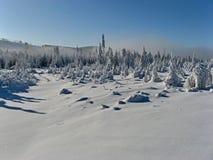 De de blauwe hemel en mist van het de winterlandschap bij bomen Stock Foto's