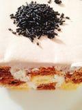 De de chocoladecake en vanille kleurden gevormd vierkant Stock Afbeelding