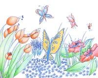 De de de lentebloemen en vlinders overhandigen getrokken potlood als achtergrond en Stock Fotografie