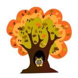 De de eiken boom en uil van de herfst Royalty-vrije Stock Fotografie