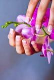De de Franse manicure en pedicure van de vrouw stock foto