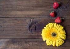 De de gele bloem en aardbei van Gerbera op donkere houten achtergrond Stock Foto