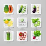 De de groentenvlakte van het Infographicvoedsel legt idee Vector illustratie royalty-vrije illustratie