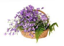 De de handklokken van bloemen in een mand op varen gaat weg Stock Afbeelding