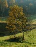 De de herfstvergadering Stock Afbeeldingen