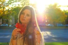 De de herfstvrouw baadde in zonlicht, die esdoornbladeren houden, Stock Foto's