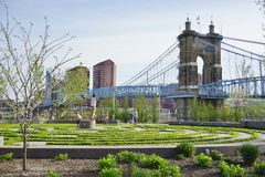 De de John A Roebling Suspension Bridge in Cincinnati, Ohio Royalty-vrije Stock Foto