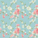 De de lentebloesem bloeit Achtergrond royalty-vrije illustratie