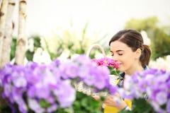 De de lentevrouw in bloementuin ruikt de sleutelbloemen in mand Royalty-vrije Stock Fotografie
