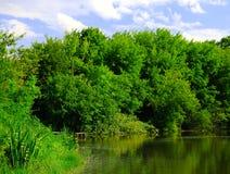 De de lenteweg van de rivier Royalty-vrije Stock Fotografie