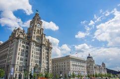 De de lever koninklijke bouw van Liverpool Stock Fotografie
