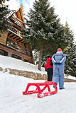 De de sneeuwwinter van de slee trok door tweepersoons Royalty-vrije Stock Foto's