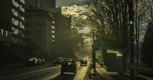 De de winter mistige ochtend Stock Afbeelding