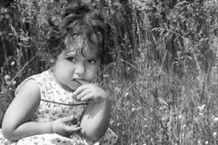 In de de zomerzitting op een krullend peinzend meisje van de bloemweide blA Stock Afbeeldingen