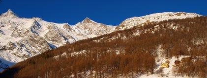 De de Zwitserse alpen en chalets van het panorama Stock Afbeeldingen