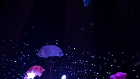 De debaixo da abóbada do circo, sob a luz dos holofotes, os confetes e os paraquedas pequenos caem video estoque