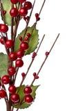 De decoratie van Chtistmas met rode geïsoleerdeo bessen Stock Fotografie