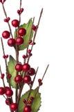 De decoratie van Chtistmas met rode geïsoleerder bessen Royalty-vrije Stock Afbeelding