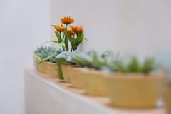 De decoratie van de bloem Stock Foto