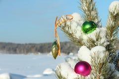 De decoratie van de glaskerstboom Royalty-vrije Stock Foto's