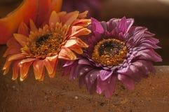 De decoratie van de herfst Stock Afbeeldingen