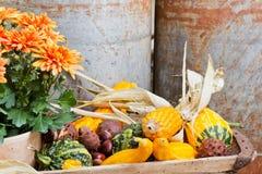 De decoratie van de herfst Royalty-vrije Stock Foto's