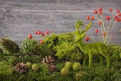 De decoratie van de herfst Granaatappel, druiven en kastanje op hout in oktober Royalty-vrije Stock Afbeeldingen