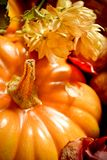 De decoratie van de herfst met een pompoen Stock Afbeelding