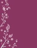 De Decoratie van de Pagina van Paisley stock illustratie