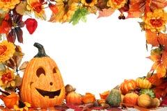 De decoratie van Halloween. Stock Afbeeldingen