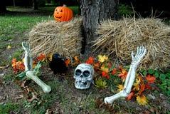 De decoratie van Halloween Stock Foto
