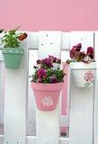 De decoratie van het viooltje Royalty-vrije Stock Foto