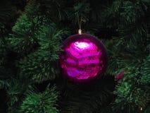 De decoratie van Kerstmis De bal van het frambozenglas Stock Foto
