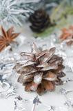 De decoratie van Kerstmis, denneappels en steranijsplant Royalty-vrije Stock Afbeelding