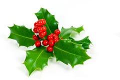 De decoratie van Kerstmis met hulstbladeren en bessen Royalty-vrije Stock Foto