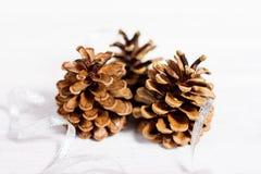 De decoratie van Kerstmis met kegel Stock Foto's