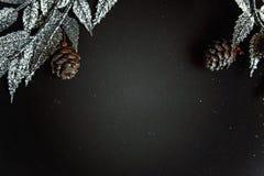 De decoratie van Kerstmis op een zwarte achtergrond Royalty-vrije Stock Foto
