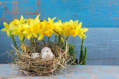De decoratie van Pasen Eieren in nesten op hout Stock Afbeelding