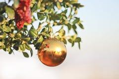 De decoratie van Sparklyballen voor Nieuwjaar en Kerstmis Stock Afbeeldingen
