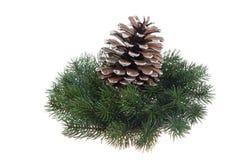 De decoratiekroon en spar-kegel van Kerstmis Stock Afbeelding