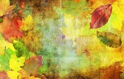 De decoratieve herfst royalty-vrije stock afbeelding